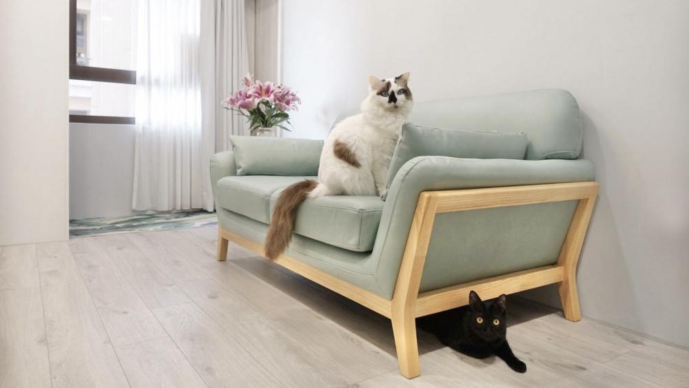 AJ2 貓抓皮沙發_西雅圖|兩人座